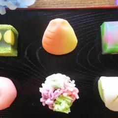 今月の上生菓子